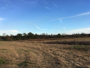 This is a photo of a field in Stanton where Dixie used to be.